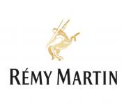 רמי מרטן לוגו